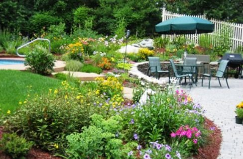 To Have Healthy Plants You Should Have Healthy Soil